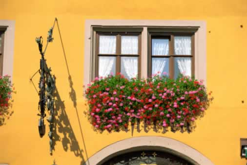 Bold Colors Create Cheery Windows You Can't Ignore