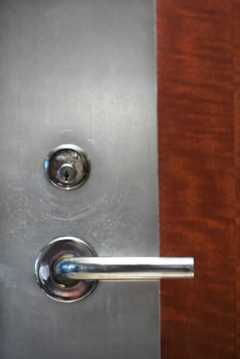 Flush Office Door with Wood Veneer and Stainless Steel Finger Plate