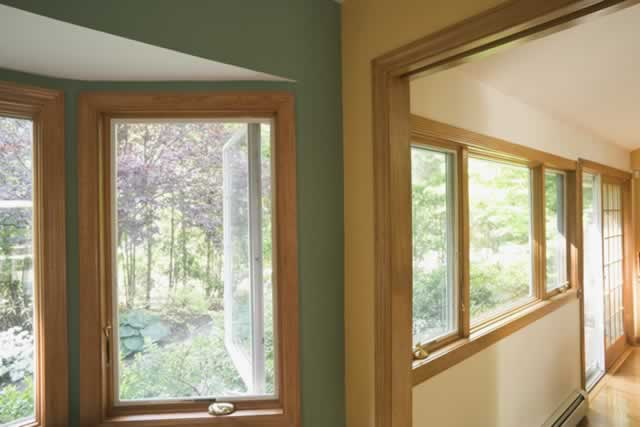 Clad Windows: Wood Plays Peek-a-Boo